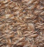 Carpet Texture. Brown close up carpet texture Royalty Free Stock Photo