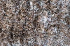 Carpet. Wool carpet texture close up royalty free stock photos