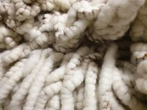 Carpet wool! warm, white, soft, thik in natural Colors royalty free stock images