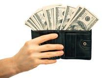 Carpeta con el dinero Imagen de archivo
