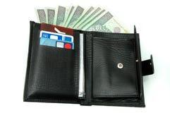 Carpeta con el dinero fotos de archivo