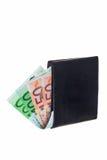 Carpeta con las notas euro. imágenes de archivo libres de regalías