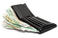 Carpeta con los billetes de banco Imágenes de archivo libres de regalías