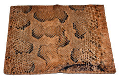 Carpeta de cuero del lagarto. Fotografía de archivo libre de regalías