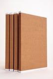 Carpetas de fichero rellenas con papeleo Foto de archivo
