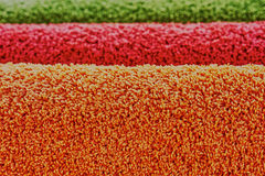 Carpeting. In the IKEA store Royalty Free Stock Photos