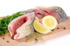 carpfisken portions rått Royaltyfri Foto