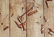 Carpintaria: aparas de madeira em um fundo de madeira claro imagens de stock