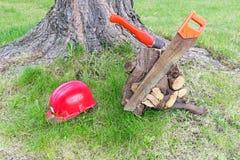 A carpintaria utiliza ferramentas perto da árvore Imagens de Stock Royalty Free