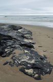 Carpinteria Beach, Tar Pit Park, Central Coast Stock Photo