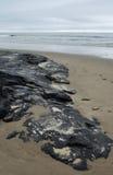 Carpinteria plaża, Smołowcowej jamy park, centrali wybrzeże Zdjęcie Stock