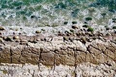 Carpinteria täuscht Felsformation des Landschaftsschutzgebiet-Küstengezeiten-Pool-Algen-Pazifischen Ozeans Stockbilder