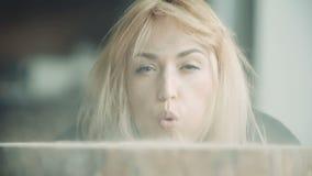 Carpintero de sexo femenino Blowing Off Sawdust en tocón de árbol almacen de video