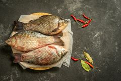 Carps. Three fresh carps on a wooden board against old grey background Stock Image