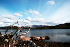 Carragh view 2. A view fom the shore of carragh lake in county kerry in ireland royalty free stock photography