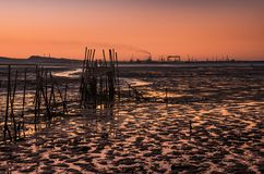 Carrasqueira Scenic Stock Photography