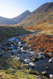 Carrauntoohill in Autumn Royalty Free Stock Photography