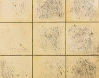 Carreaux de céramique carrés intérieurs ou extérieurs de salle de bains ou de cuisine Photographie stock
