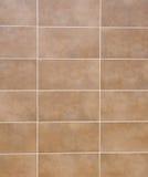 Carreaux de céramique de Brown avec la fugue blanche sur le mur Image stock