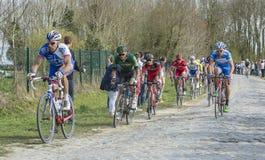 The Peloton  - Paris Roubaix 2015 Royalty Free Stock Photography
