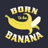 Carregado ser banana Fotografia de Stock