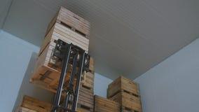 Carregador que carrega grandes caixas com as maçãs video estoque