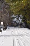 Carreggiata di Snowy Fotografia Stock Libera da Diritti