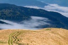 Carreggiate nelle montagne carpatiche Fotografia Stock Libera da Diritti