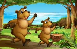 Carregue correr na floresta ilustração do vetor