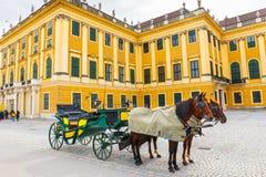 Carrelli del cavallo al quadrato principale del palazzo di Schonbrunn a Vienna, Austria immagine stock libera da diritti