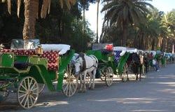 Carrelli trainati da cavalli nel Marocco fotografie stock