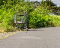 Carrello abbandonato in un parco fotografie stock libere da diritti