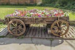 Carrello con i fiori Fotografia Stock