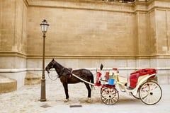 Carrello con il cavallo nella cattedrale di Majorca in Palma Immagine Stock