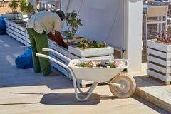 Carrello decorativo bianco della costruzione al caffè con il giardiniere Fotografia Stock