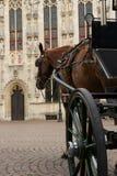 Carrello del cavallo Fotografie Stock