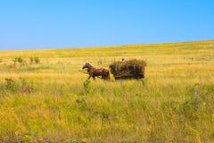 Carrello del cavallo Immagine Stock Libera da Diritti