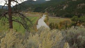 Carrello della macchina fotografica, Nicola Valley e fiume, Columbia Britannica stock footage