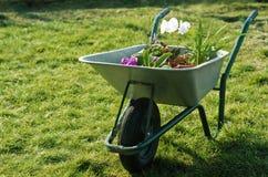 Carrello della rotella del giardino immagine stock libera da diritti