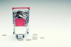 Carrello di acquisto Carrello di acquisto Carrello di acquisto in pieno di euro monete soldi - valuta Esempio simbolico di denaro Immagine Stock