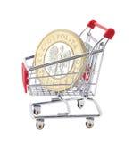 Carrello di acquisto con la moneta polacca Fotografia Stock Libera da Diritti