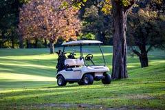 Carrello di golf Fotografie Stock