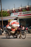 Carrello di verdure di trasporto dei sacchi dell'uomo indiano a disposizione Fotografia Stock