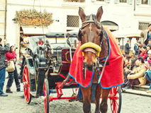 Carrello e cavallo Fotografia Stock