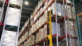Carrello elevatore in fabbrica clip Concetto logistico, di carico, della spedizione e della gente all'ingrosso - uomo con il cari video d archivio