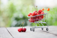 Carrello fruttato in pieno delle ciliege delle fragole Gli agricoltori raccolgono sul fondo del paesaggio della pianta, profondit Immagini Stock
