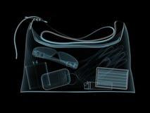 Carrello-sacchetto nei raggi X Fotografia Stock Libera da Diritti