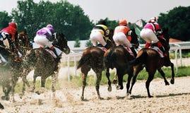 Carrera de caballos. fotos de archivo libres de regalías