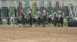 Carrera de caballos Fotos de archivo libres de regalías