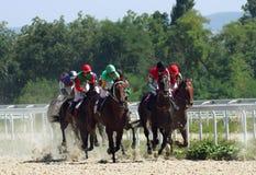 Carrera de caballos. Foto de archivo